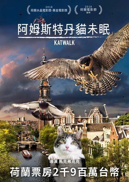 阿姆斯特丹貓未眠