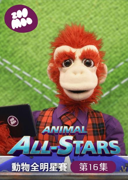 動物全明星賽