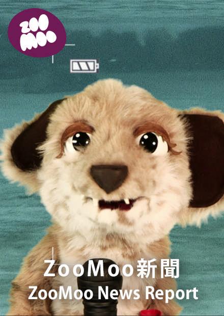 ZooMoo新聞