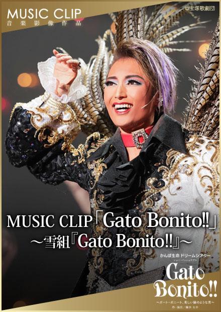MUSIC CLIP「Gato Bonito!!」~雪組「Gato Bonito!!」~