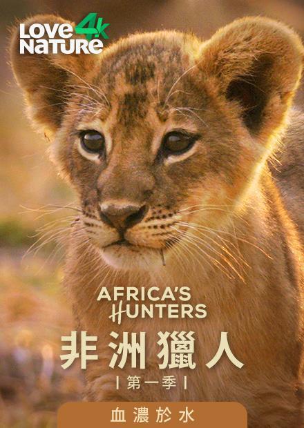 非洲獵人第一季-血濃於水