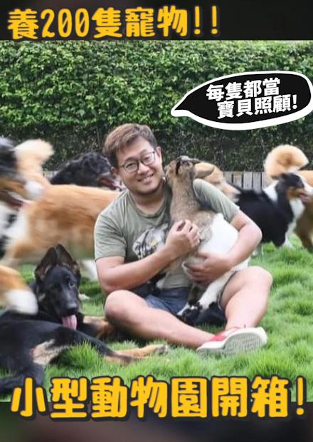 養200隻寵物!德爺小型動物園開箱!!