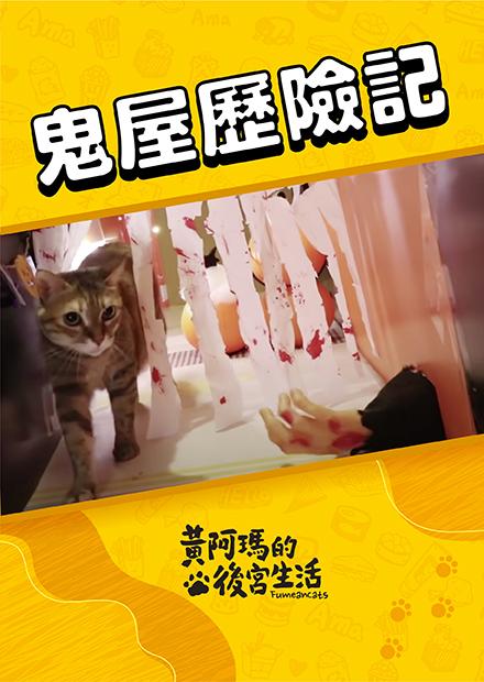 【黃阿瑪的後宮生活】鬼屋歷險記!猛鬼vs餓貓!萬聖節企劃