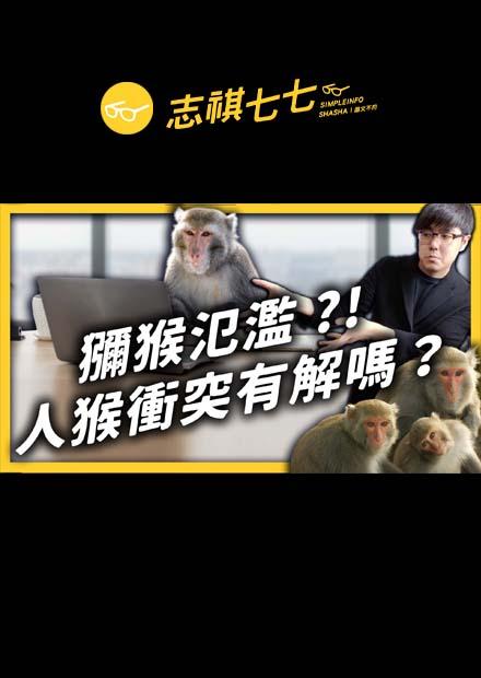 捷運站、辦公室,哪來這麼多猴子?你知道現在臺灣獼猴已經不是保育類了嗎?|志祺七七