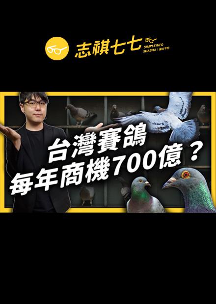 一隻鴿子身價破千萬!商機蓬勃的台灣賽鴿,在國際上卻陷入了形象危機?|志祺七七